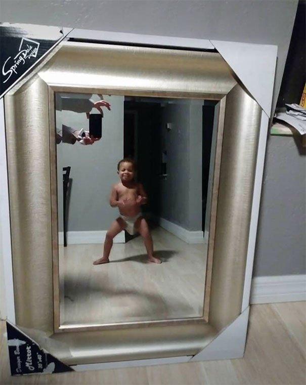 том, что смешные фото с отражения зеркал обои тигр