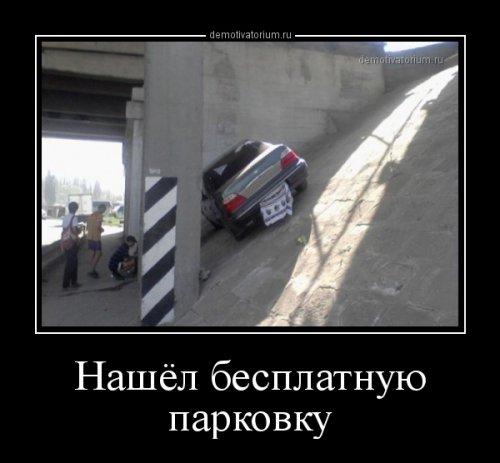 1519921132_demki-17.jpg