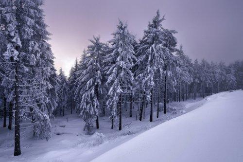 Зимняя сказка Килиана Шёнбергера (9 фото)