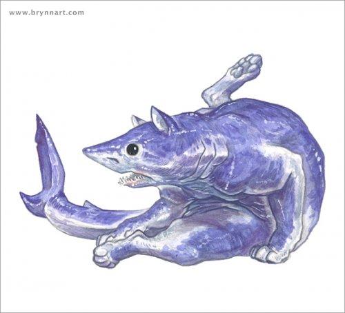 Кошачьи акулы Бринна Метени (12 фото)