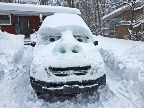 За что мы любим зиму (18 фото)