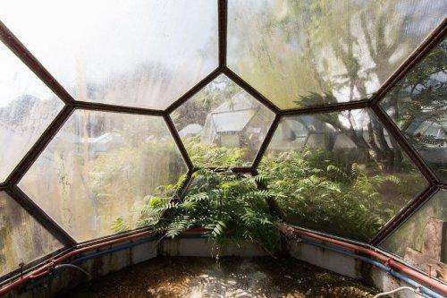 Природа возвращает заброшенные места в свои владения (21 фото)