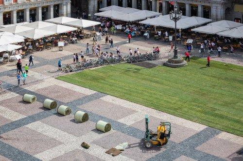 Мадридская площадь на несколько дней превратилась в парк с газоном площадью более 3 тысяч кв. м (10 фото)