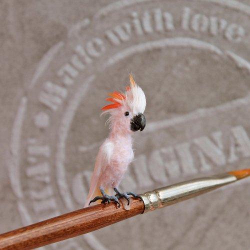 Крошечные реалистичные птицы художницы Кэти Дока (17 фото)