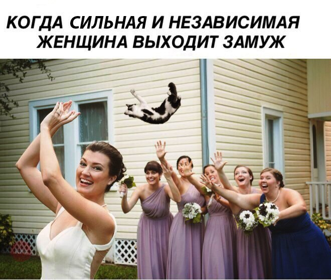 замуж картинки демотиваторы покрутил