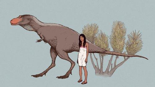 Художник продемонстрировал как на самом деле выглядели динозавры (25 фото)