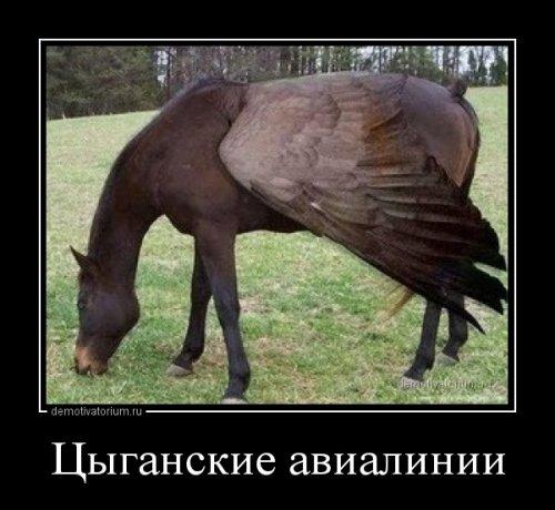 Свежих демотиваторов пост (11 шт)