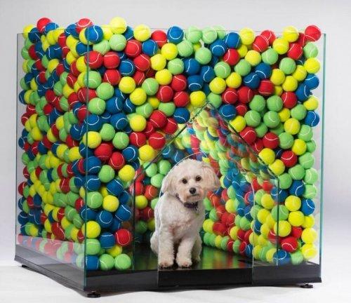 Будки и лежаки для собак, созданные именитыми архитектурными компаниями и дизайнерами в рамках благотворительного проекта BowWow Haus (23 фото)