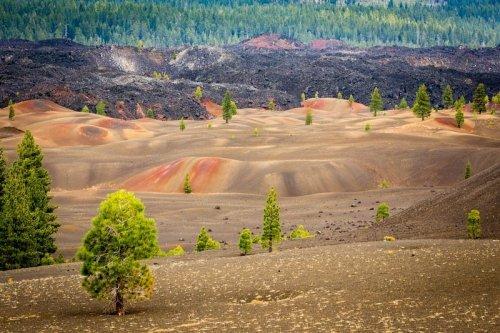 Цветные дюны Национального парка Лассен-Волканик (8 фото)