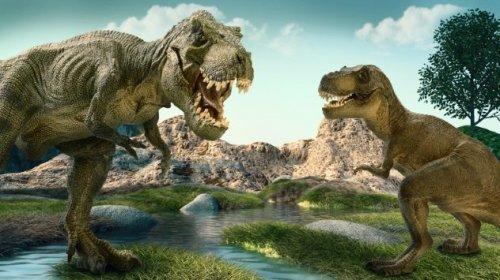 Топ-10: причины, по которым тираннозавры были намного страшнее и опаснее, чем известные монстры из кино