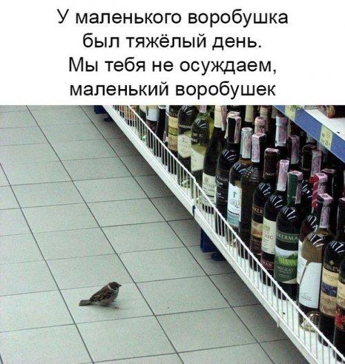 http://www.bugaga.ru/uploads/posts/2018-05/thumbs/1525173925_svezhak-12.jpg