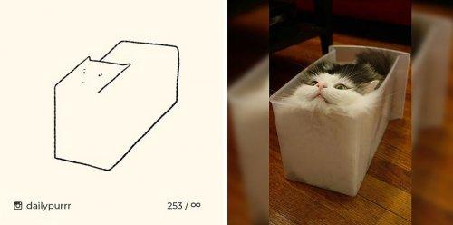 Instagram-аккаунт, в котором публикуются самые нелепые рисунки кошек (16 фото)