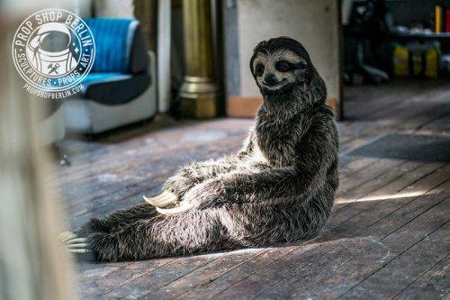 Художница создала костюм ленивца, реалистичность которого зашкаливает (8 фото)