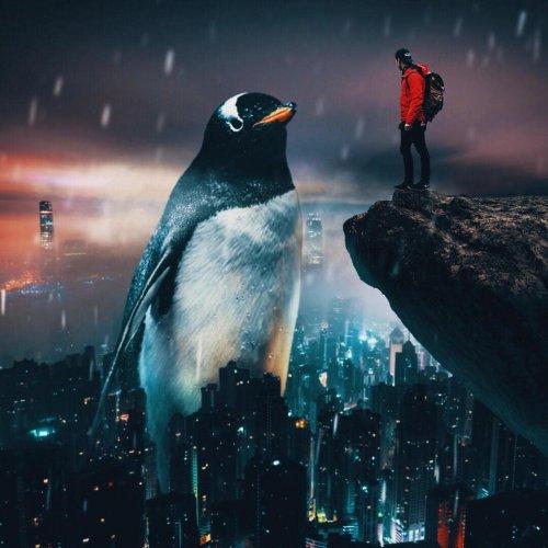 Гигантские животные в фотоманипуляциях канадского художника Mani (16 фото)