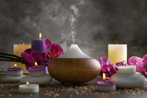 Топ-10: интересные мифы и теории из прошлого и настоящего про обоняние и запахи