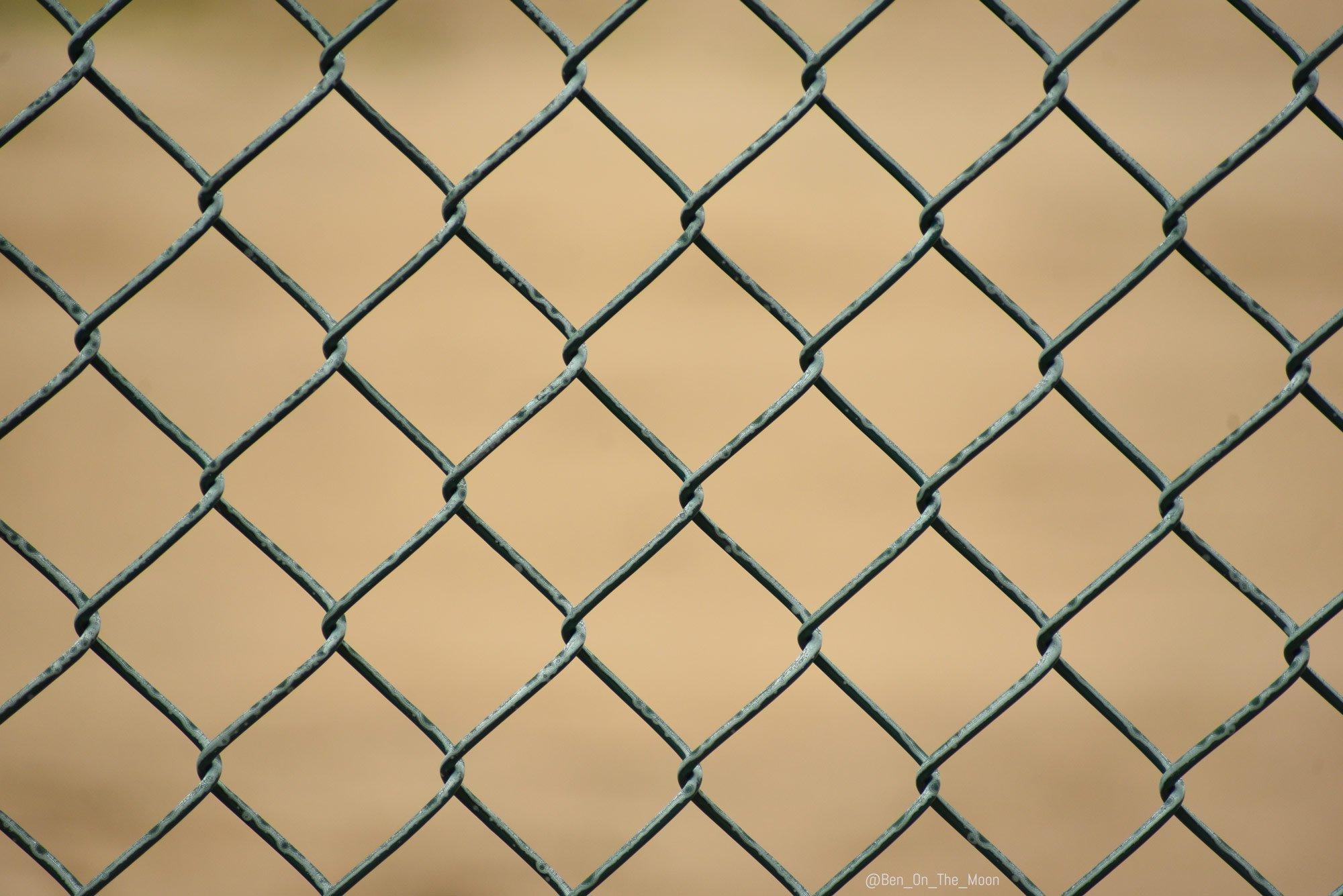 Уникальный природный узор на проволочном заборе (7 фото)