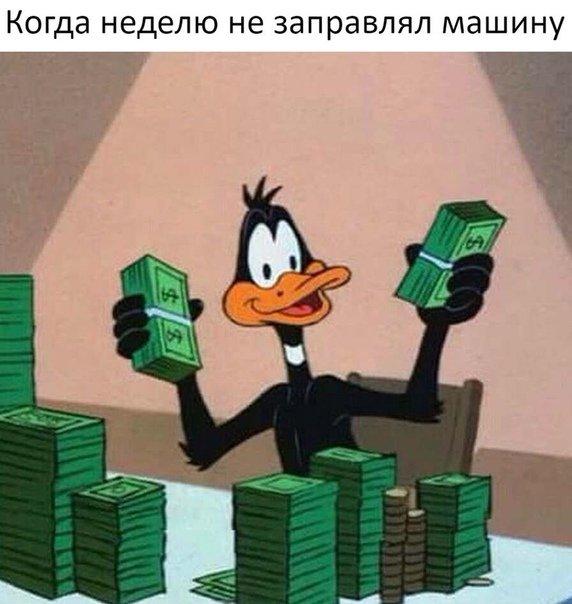 1529946922_avtoprikoly-5.jpg
