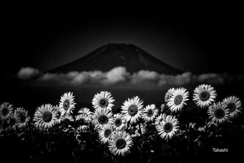1528125928_foto-fudziyama-9.jpg