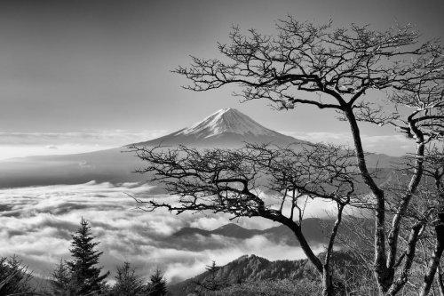 1528125947_foto-fudziyama-5.jpg
