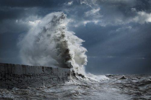 Морские волны в фотографиях Рейчел Талибарт (19 фото)