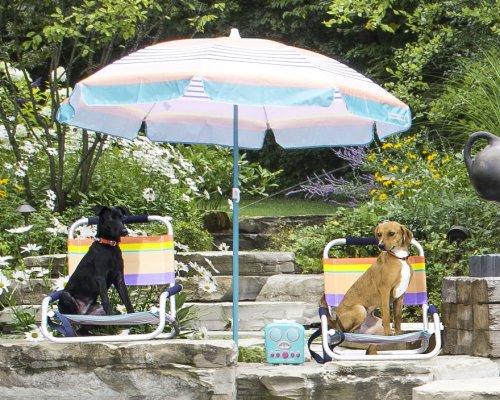 Необычная вечеринка у бассейна в фотографиях Пита Торна (6 фото)