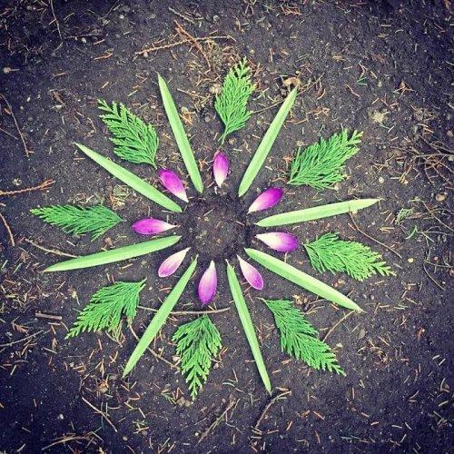 Растительные мандалы Мие Бух Андерсен (24 фото)