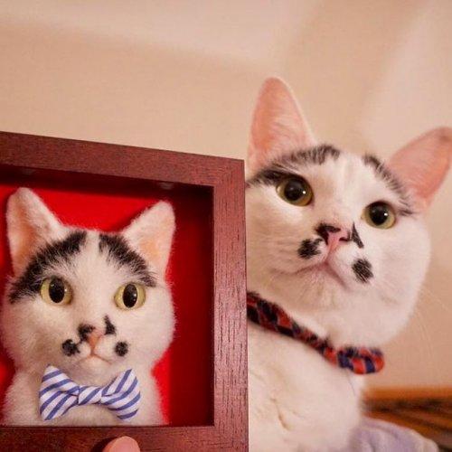 Гиперреалистичные трёхмерные войлочные портреты кошек (16 фото)