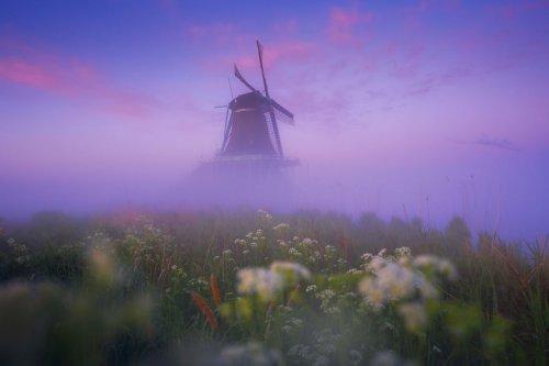 Голландская деревня мельниц Зансе Сханс через объектив фотографа Альберта Дроса (11 фото)