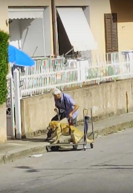 Это трогательное видео про мужчину и его больную собаку покоряет всё больше сердец по всему миру (2 фото + видео)