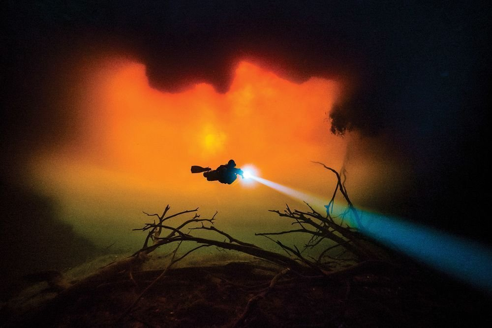 Победители конкурса лучшей подводной фотографии, организованного журна