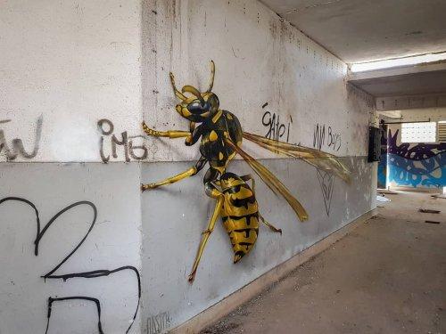 Стрит-арт, который может напугать: гигантские и невероятно реалистичные анаморфные рисунки насекомых (9 фото)