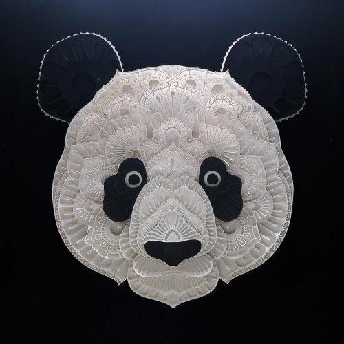 Трёхмерные многослойные бумажные скульптуры животных (13 фото)