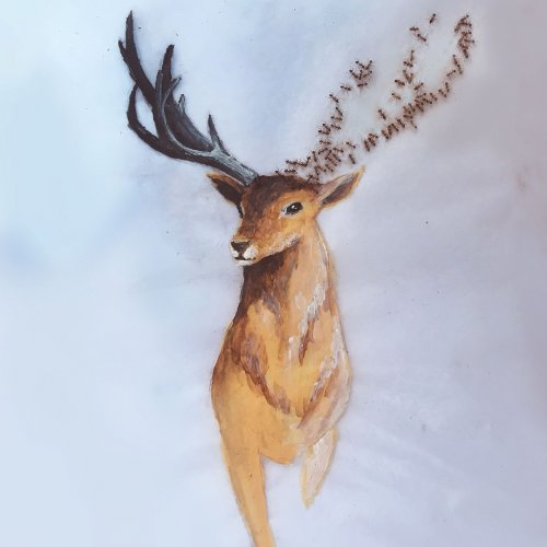 Картины художницы Ианты Найкер, созданные с участием… муравьёв (8 фото)