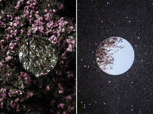 Абстрактные фотопейзажи Себастьяна Маньяни, созданные с помощью зеркал (8 фото)