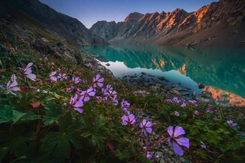 Красота киргизской земли глазами фотографа Альберта Дроса (25 фото)
