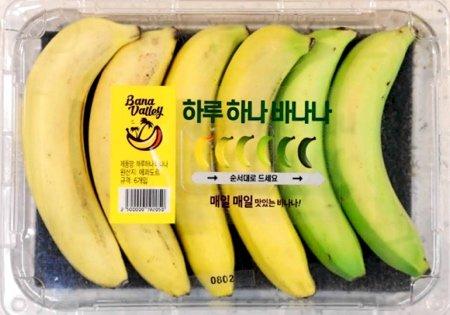 Креативная упаковка бананов, постепенно дозревающих один за другим (2 фото)
