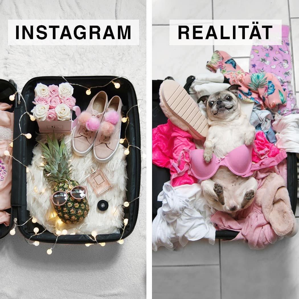 Смешные картинки на инстаграм