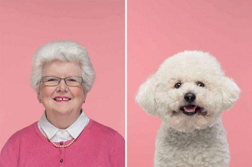 Фотограф снимает забавные портреты собак и их владельцев, демонстрируя их удивительное сходство (9 фото)