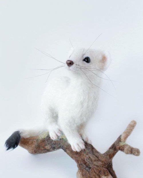 Реалистично выглядящие войлочные скульптуры животных (17 фото)