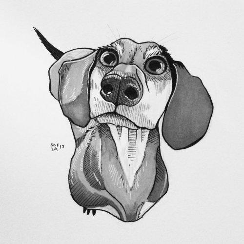 Арт-вызов самой себе: художница нарисовала 30 собак за 30 дней (20 фото)