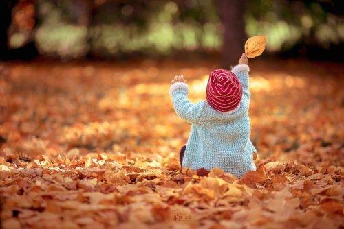 Осенняя красота в фотографиях (12 фото)