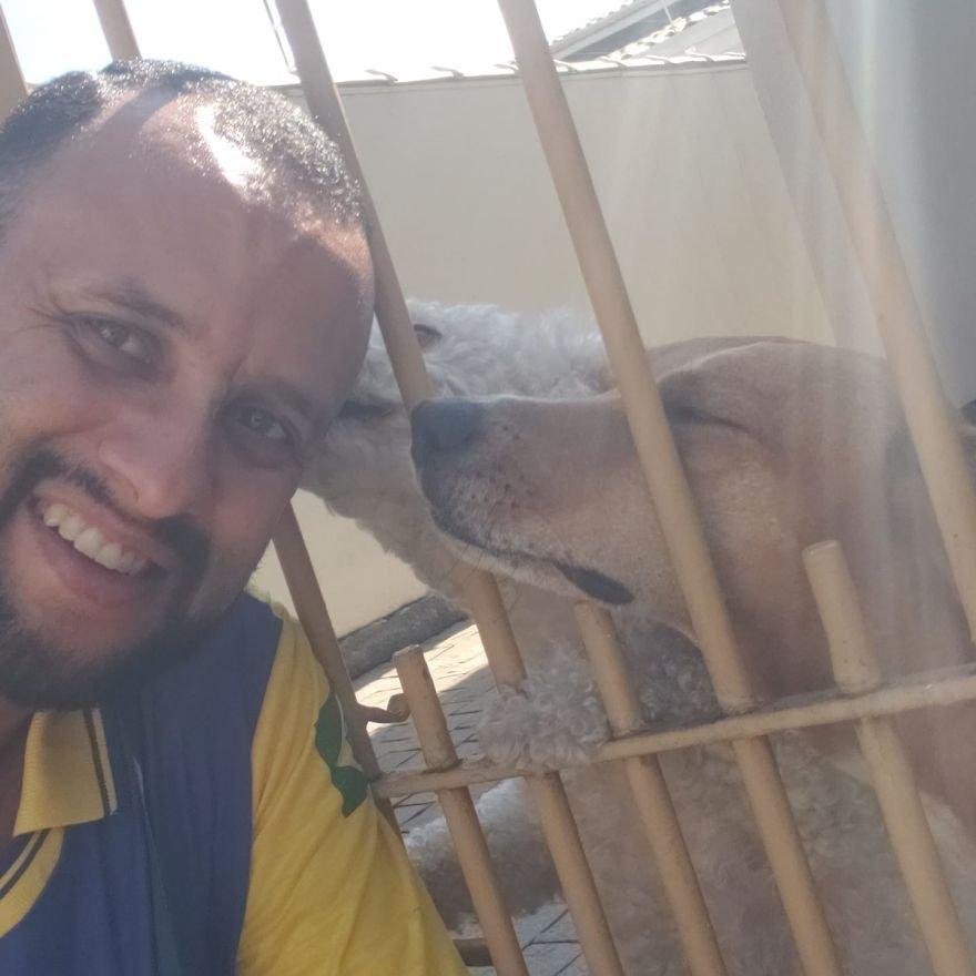 Бразильский почтальон стал лучшим другом собак, и эти селфи являются о