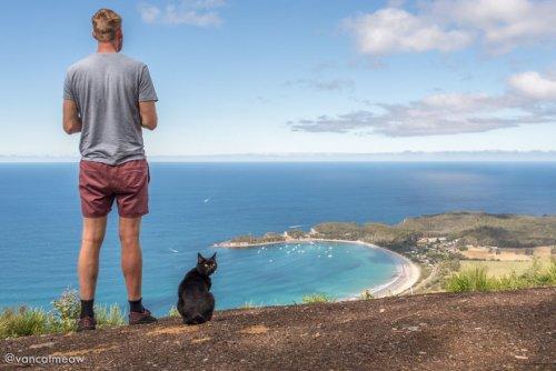 Австралиец Рич Ист, который однажды бросил работу, продал дом и имущество, чтобы путешествовать вместе со своей кошкой (15 фото)