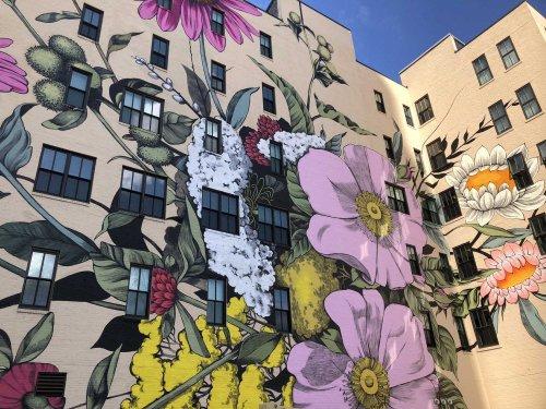 Художница превращает улицы городов в красочные цветочные сады (10 фото)