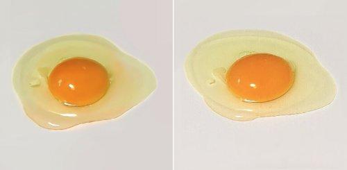 Одно из этих яиц настоящее, а другое — рисунок. Сможете определить, какое из них где? (3 фото)
