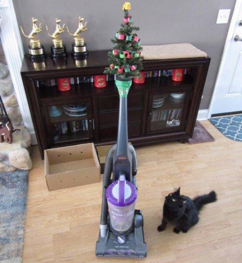 Как выглядят новогодние ёлки в домах людей, у которых есть домашние питомцы (20 фото)