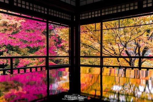 Фотограф запечатлел живописную осень в Киото (21 фото)
