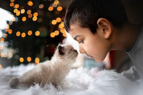 Очаровательные фотопортреты детей, которые подарят вам приятные эмоции (29 фото)