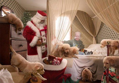 Фотографы из благотворительной организации под Рождество ездят по больницам, чтобы подарить больным деткам и их родителям немного радости (17 фото)