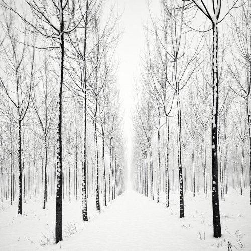 Чёрно-белые минималистичые фотопейзажи Пьера Пеллегрини (10 фото)